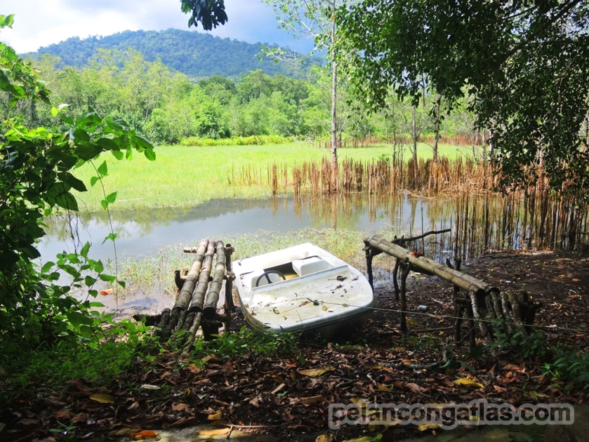 Speedboat yang terabaikan