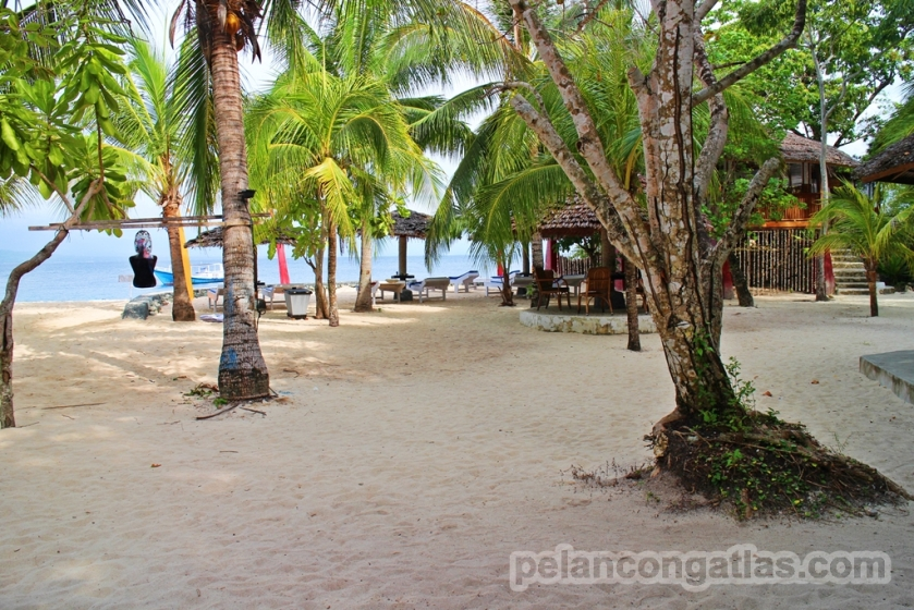 Prince John Dive Resort, Donggala.
