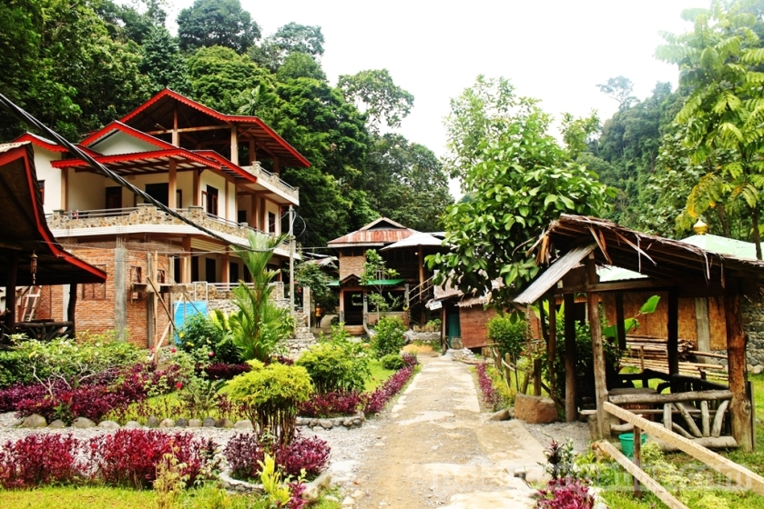 Bukit Lawang Village
